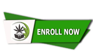 Enroll Now Button 300x180