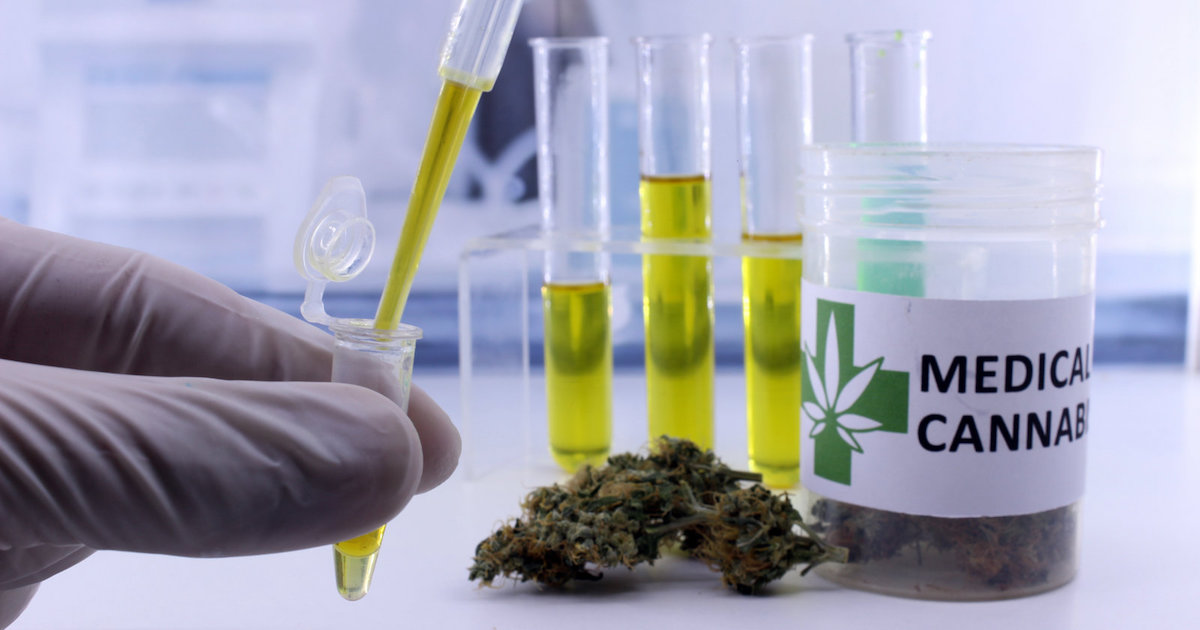 cannabis research projects